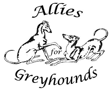 Allies for Greyhounds