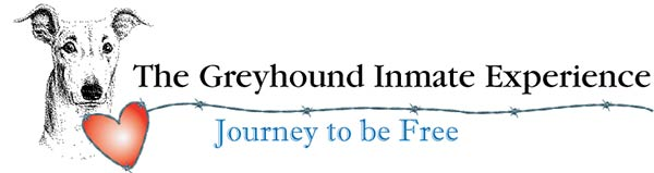 The Greyhound Inmate Experience